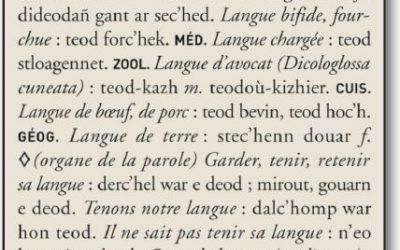 Traduction : CG Traduction & Interprétation s'enthousiasme pour la publication du plus grand dictionnaire français-breton depuis 1464 !